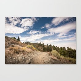 Hiking trail along Pacific Crest Trail in Southern California Canvas Print