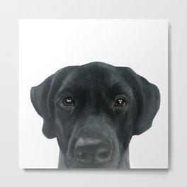 Labrador New, Acrylic painting by miart Metal Print