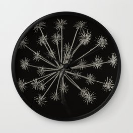 Project 'Decay'. Hogweed (Heracleum sphondylium) Wall Clock