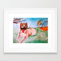 pit bull Framed Art Prints featuring Pit Bull by Caballos of Colour