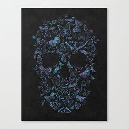 Skull Butterfly 4 Canvas Print