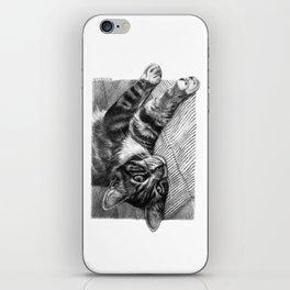 Resting Kitty G064 iPhone Skin