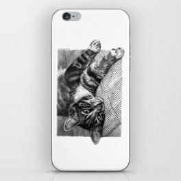 Resting Kitty G064 iPhone Skin