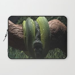 Green Boa Laptop Sleeve