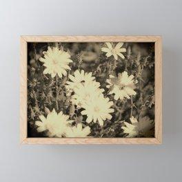 Desert Chicory Coachella Wildlife Preserve in Sepia Framed Mini Art Print