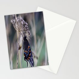 Butterfly emerging from cocoon Stationery Cards