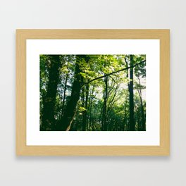 Start of Fall Framed Art Print