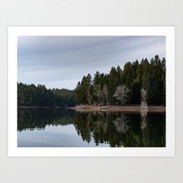 Trees Reflecting into Paradise Lake Art Print