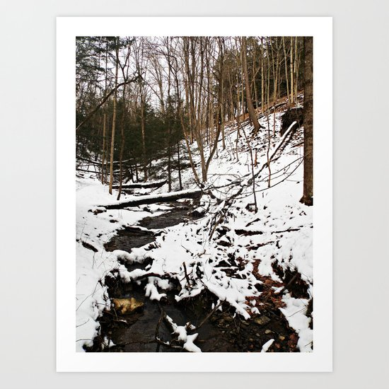 Downhill Stream  Art Print