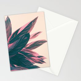 Pink Kalathea Stationery Cards