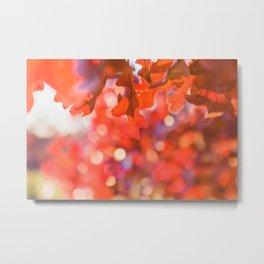 Sparkles in Autumn Metal Print