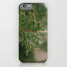 A Winter Water Drop Slim Case iPhone 6s