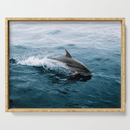 Dolphin in the Atlantic Ocean - Wildlife Photography Serving Tray