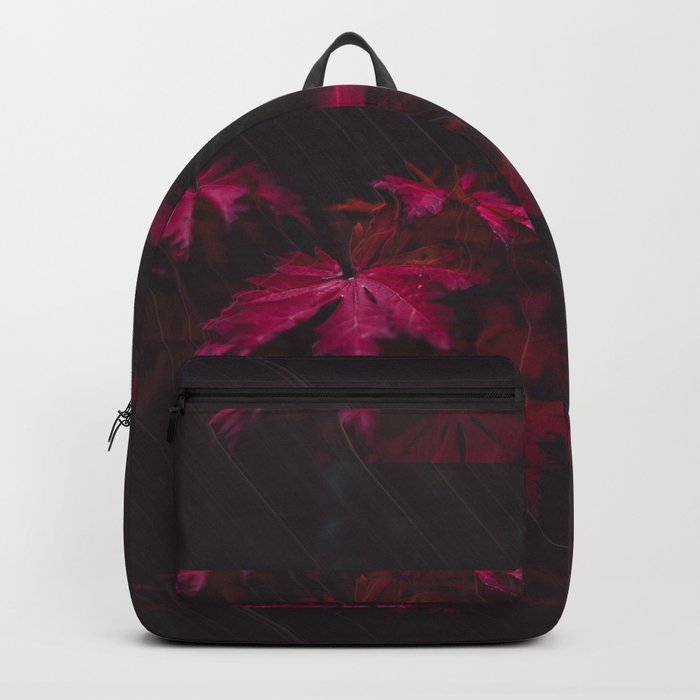 What We Know Backpack