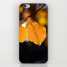 Embers V iPhone & iPod Skin