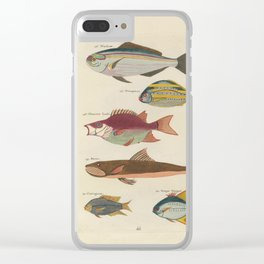 Vintage Fish Illustration II Clear iPhone Case