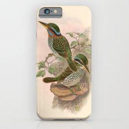 Actenoides Lindsayi Kingfisher Vintage Birds iPhone Case