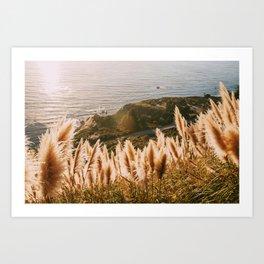 Big Sur at Sunset Art Print