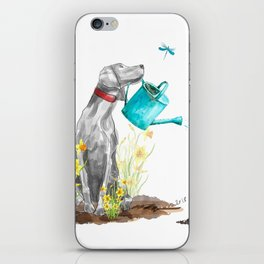DAFFODILS AND WEIM iPhone Skin