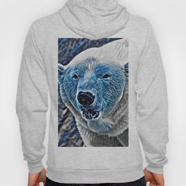 BLUE - Polar Baer Hoody