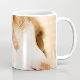 My cat Coffee Mug