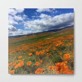 Poppy Fields 2 Metal Print
