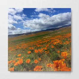 Poppy Fields 2 Metal Print