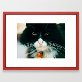 Rest In Peace, Cameron Framed Art Print