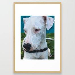 Rocky Dog Framed Art Print