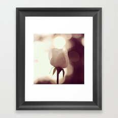 Rose by Dusk Framed Art Print