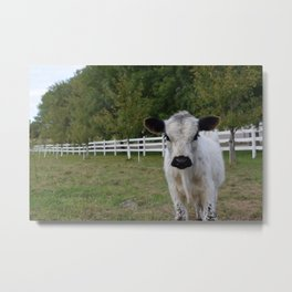 Hey, You There! Metal Print