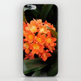 Natural Bouquet iPhone Skin
