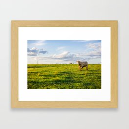 Cows in the Pasture Framed Art Print