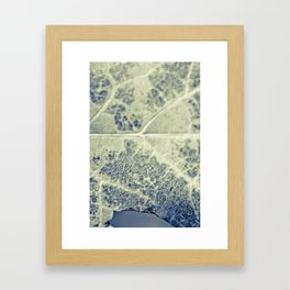 Look Closely Framed Art Print