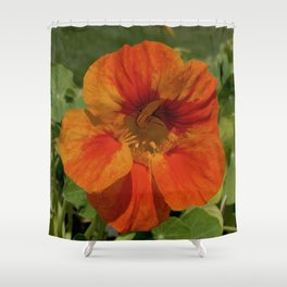 Glorious Nasturtium Shower Curtain