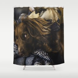 Irish Setter and Pug Relaxing Together Shower Curtain