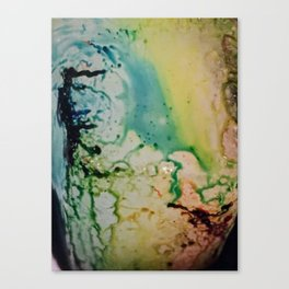 inky iii Canvas Print