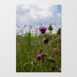 Sprouting Flowers Canvas Print