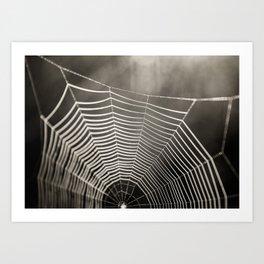 SPIDERWEB TRAVELS Art Print