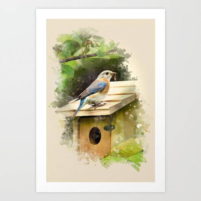 Watercolor Bluebird Art Art Print