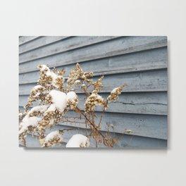 Snowy Flowers Metal Print