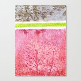 Mid Winter Canvas Print