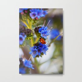 Fly Away Home Metal Print