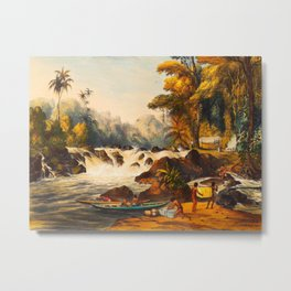 Illustrations Of Guyana South America Natural Scenes Hand Drawn Metal Print