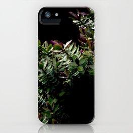 Haphazard Hebe iPhone Case