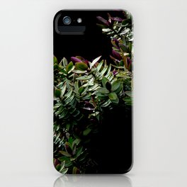 Haphazard Hebe iPhone Case