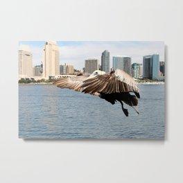 Pelican Ready To Land Metal Print
