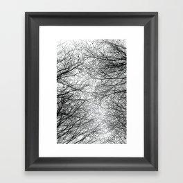 Tree Silhouette Series 5 Framed Art Print