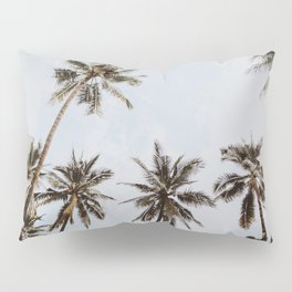 palm trees xiv / chiang mai, thailand Pillow Sham