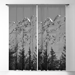 Gwin's Winter Vista - B & W Blackout Curtain